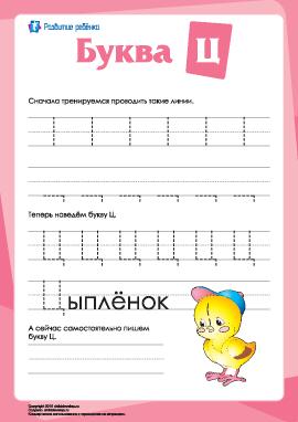 Русский алфавит: написание буквы «Ц»