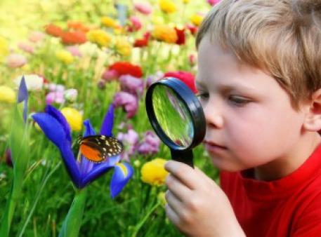 Наука для любознательных малышей