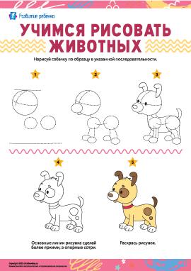 Учимся рисовать животных: собачка