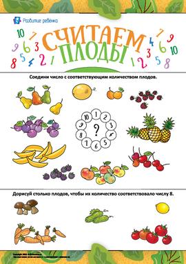 Считаем плоды: изучаем состав числа