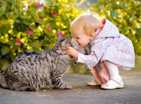 Здоровы домашние животные – здоровы дети