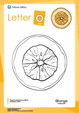 Раскраска «Английский алфавит»: буква «O»