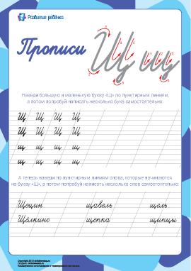 Прописи: буква Щ (русский алфавит)
