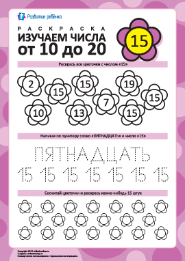 Изучаем число «15»