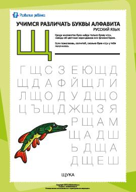 Русский алфавит: найди букву «Щ»
