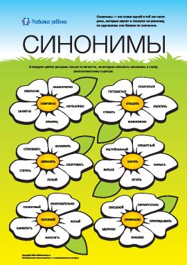 Изучаем синонимы: №5 (русский язык)