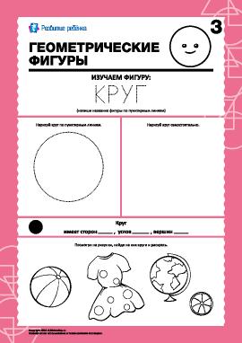 Геометрические фигуры: изучаем круг