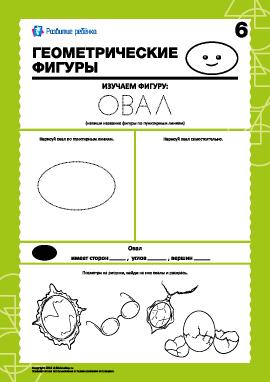 Геометрические фигуры: изучаем овал