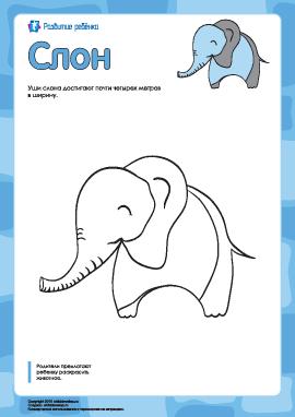 Раскраска «Слон»
