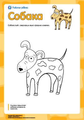 Раскраска «Собака»