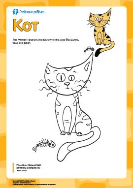 Раскраска «Кот»