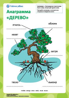 Анаграмма «Дерево»