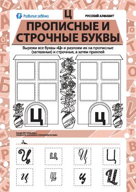 Учим заглавную и строчную букву Ц (русский алфавит)