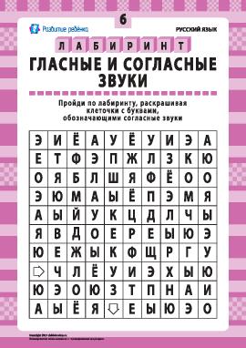 Гласные и согласные звуки № 6 (русский язык)