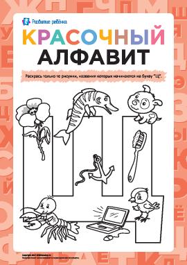Раскрашиваем рисунки на букву «Щ» (русский алфавит)