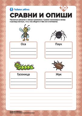 Опиши рисунки и сравни №10 (насекомые)