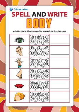 Пишем по буквам названия частей тела (английский язык)