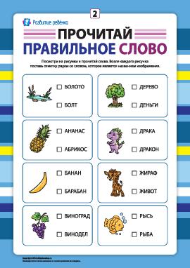 Выбери правильное слово №2 (развитие навыков чтения)