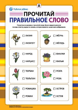 Выбери правильное слово №8 (развитие навыков чтения)