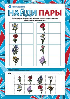 Сравни и найди пару: цветы