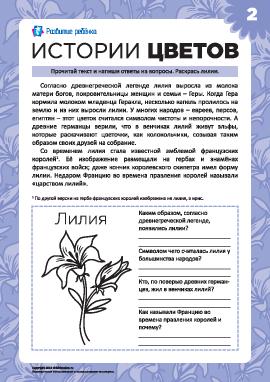 Истории цветов: лилия