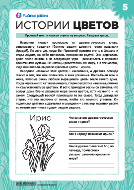 Истории цветов: ирис