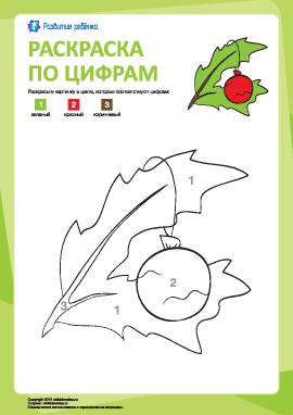 Раскраска по цифрам: лист и игрушка