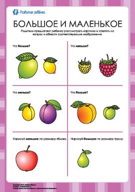 Какой фрукт больше, а какой — меньше