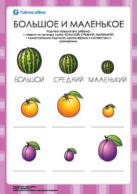 Подпиши большие и маленькие фрукты