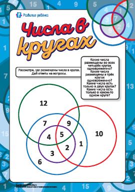 Определяем, какие числа размещены в кругах