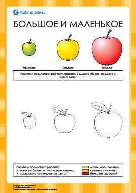 Большое и маленькое: раскраска яблоки