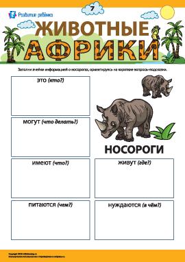 Рассказываем о носорогах