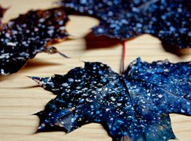 Живописная Вселенная на осенней листве