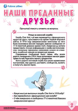 Истории о преданных животных: голубь Cher Ami