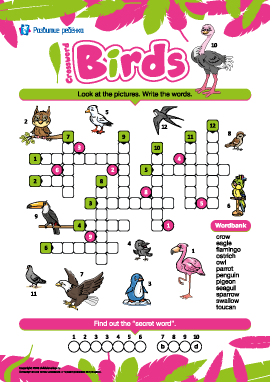 Кроссворд на английском «Птицы»
