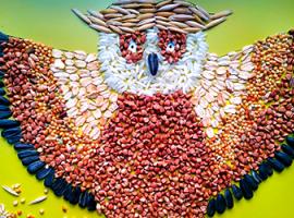 Аппликация из круп: выкладываем разноцветную сову