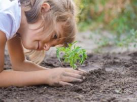 Учим детей заботиться об окружающей среде